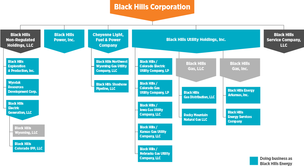 corporate structure chart